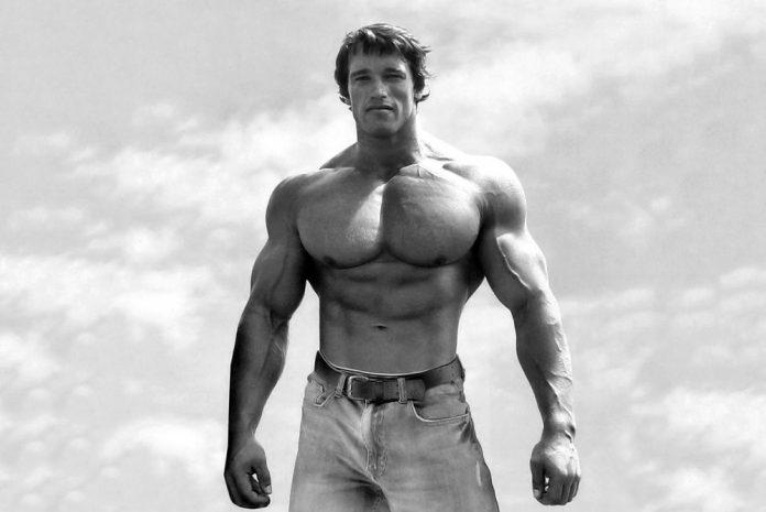 """今なぜ、こんなにも""""筋肉""""に関心が ..."""
