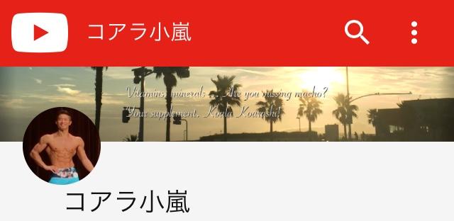 コアラ小嵐のYouTube広告収益